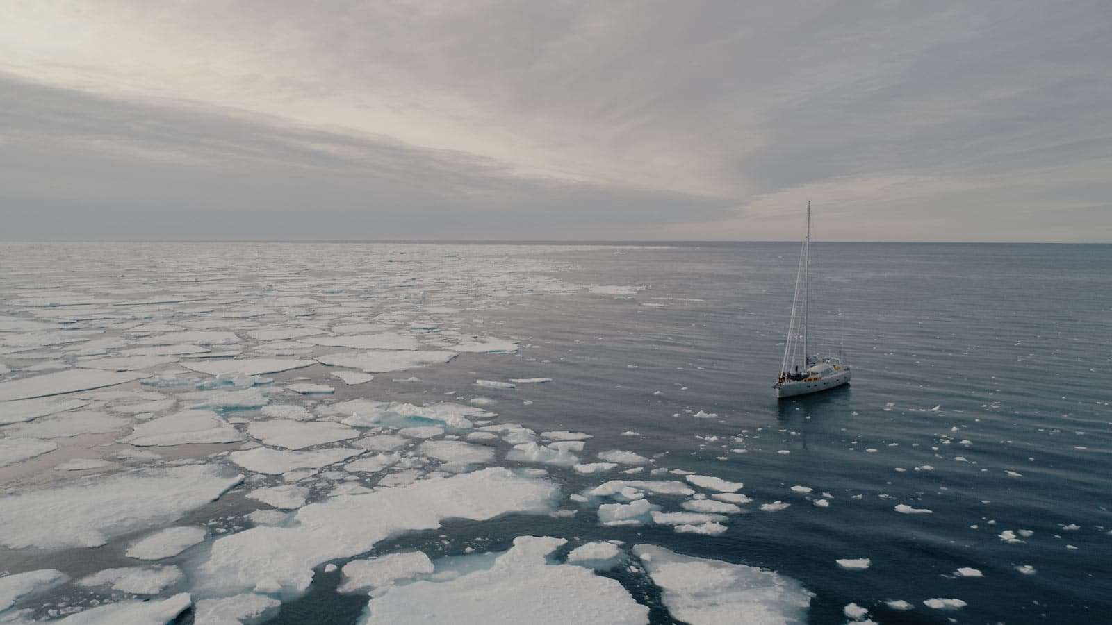 cruises on small expedition vessels in the arctic