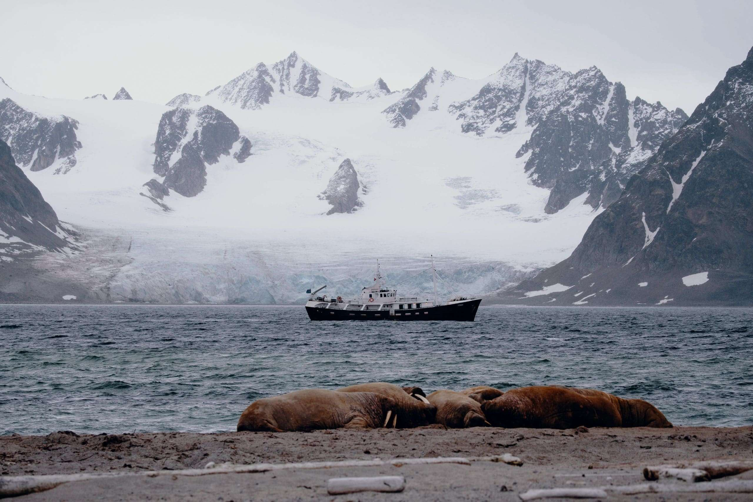 photography expedition in svalbard on a small boat