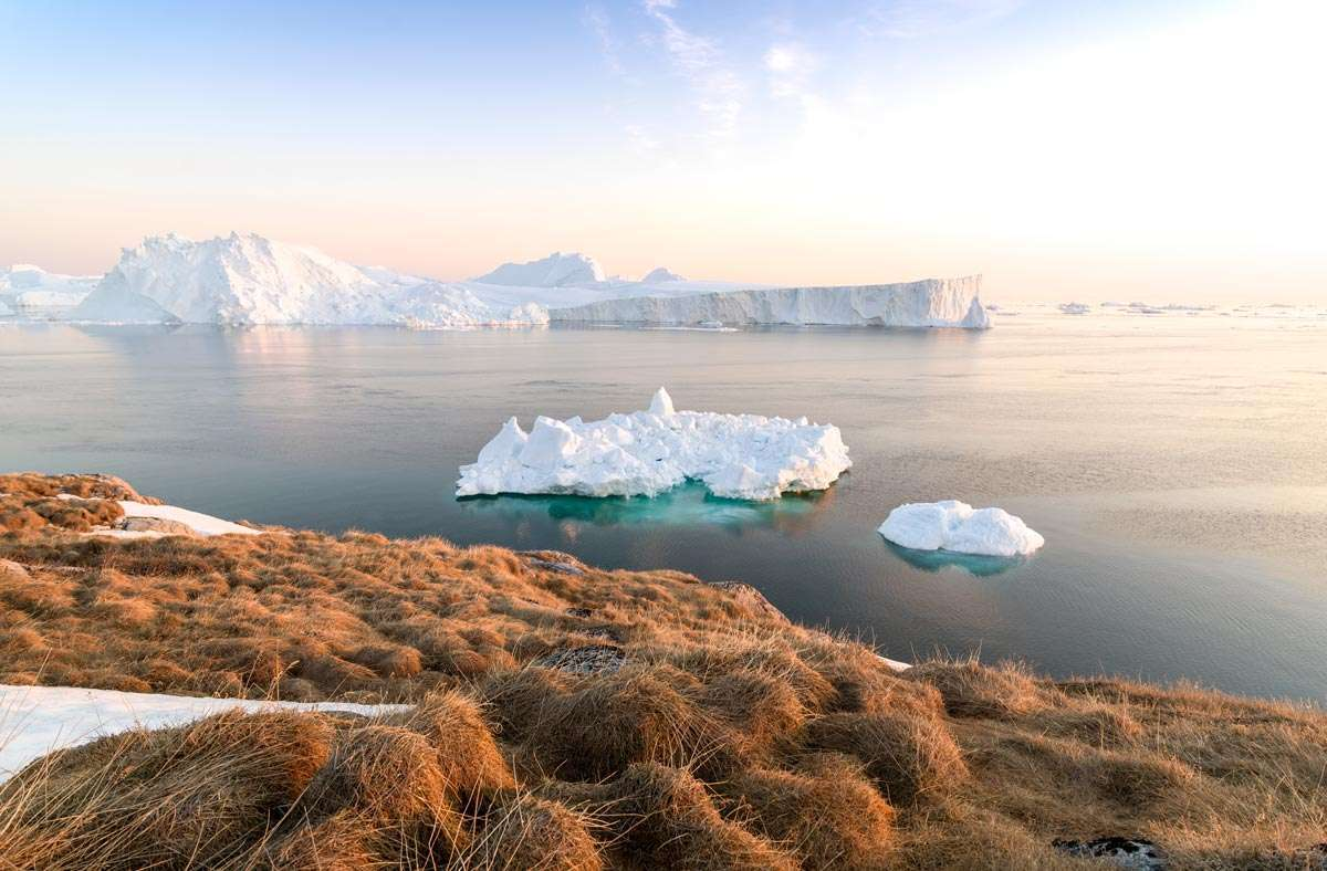 cruise to greenland on an expedition micro cruise