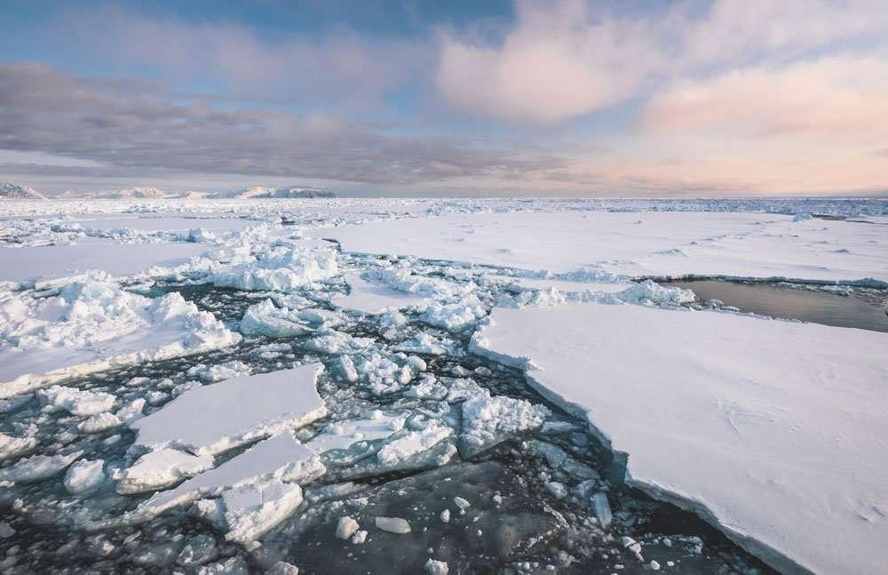 sea ice photo tour