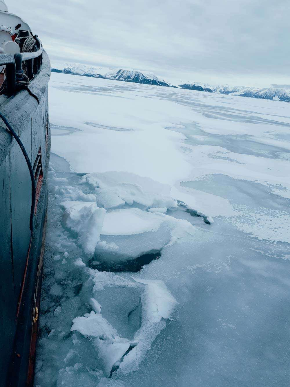 expedition vessel in svalbard
