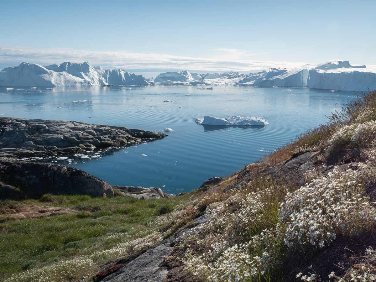 greenland small ship cruise