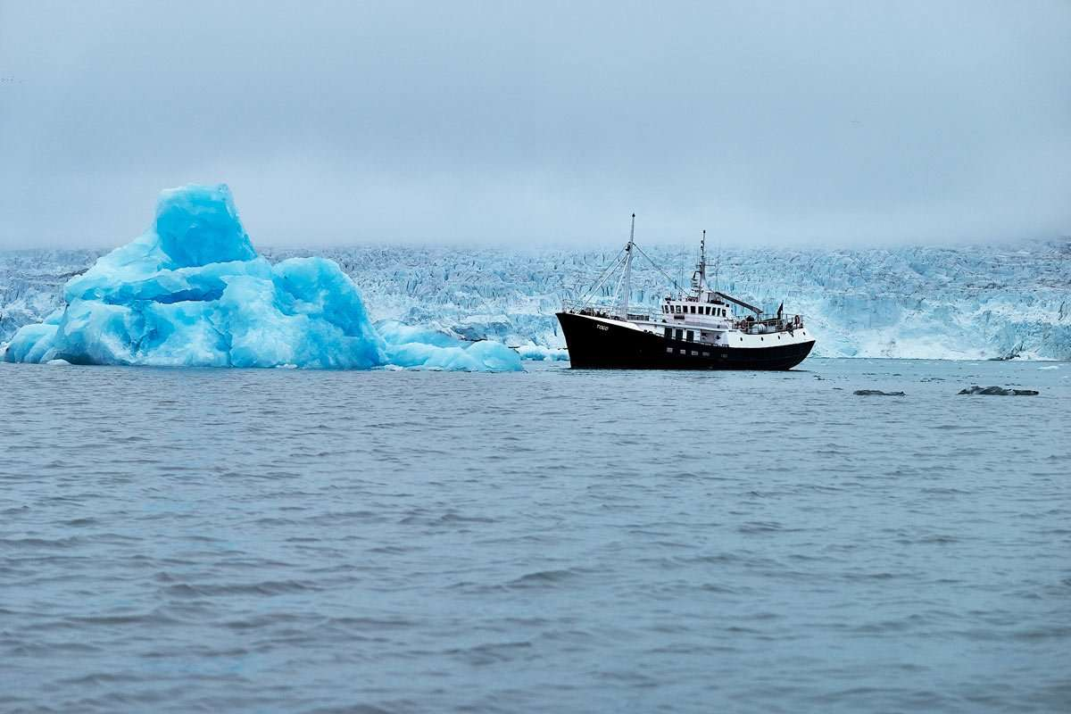 arctic cruises private expeditions