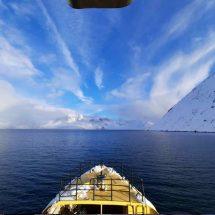 greenland boat cruise