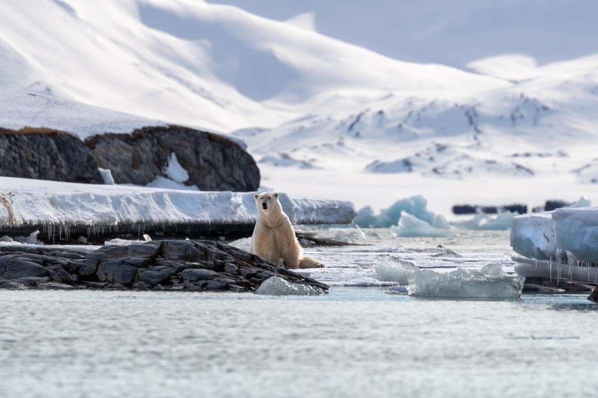 spitsbergen photography expedition