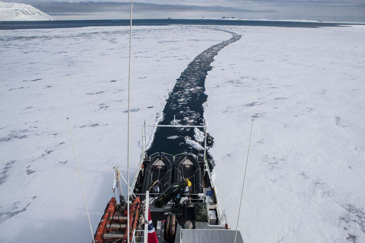 expedition vessel charter