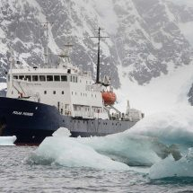 South georgia expedition vessel