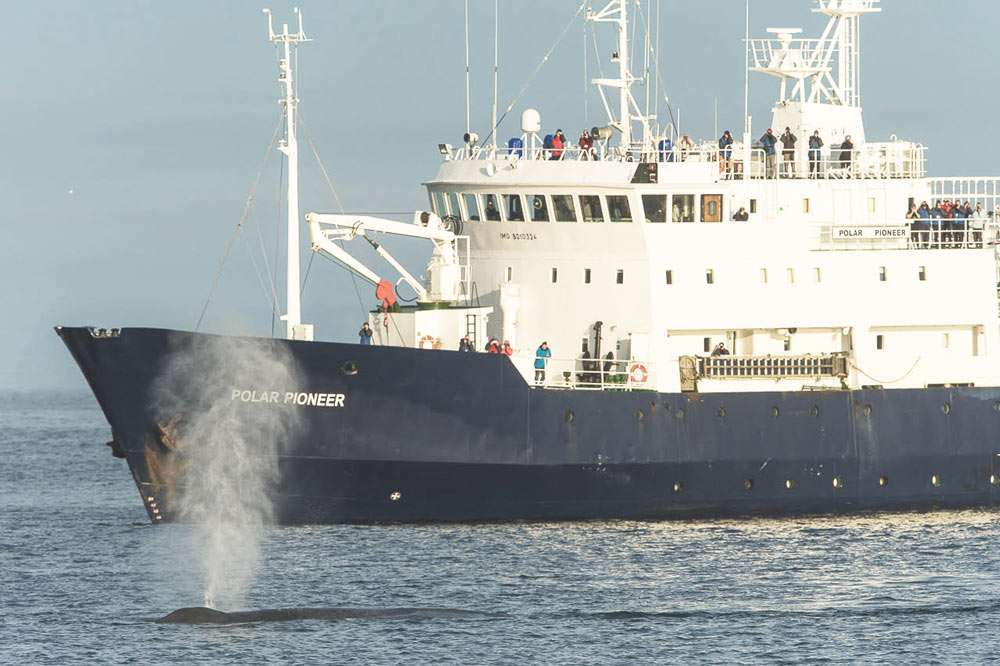 polar pioneer expedition cruise ship