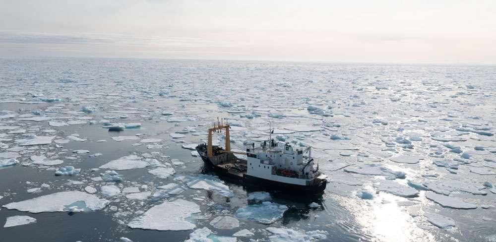 svalbard expedition cruise